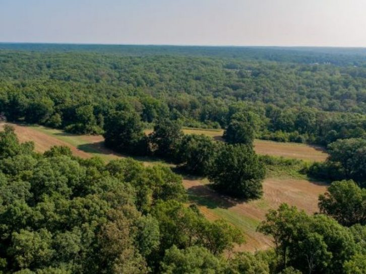 330 Acres Callaway County