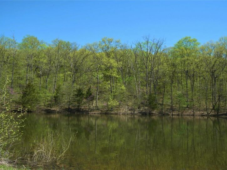 63+/- Acres For Sale At Emmaus Properties Off Hwy D
